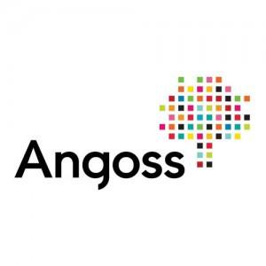 Angoss_TwitterLogo